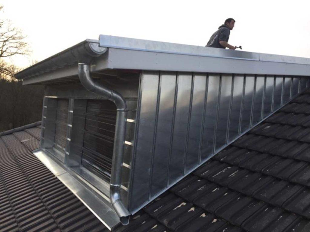 R novation et extension eg constructions - Chien assis toiture ...